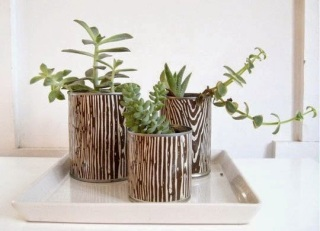 http://www.apartmenttherapy.com/la/how-to/how-to-make-can-planters-075636