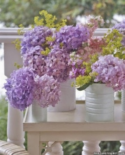 http://www.marthastewart.com/photogallery/60-great-ideas-for-the-garden?autonomy_kw=tin%20cans