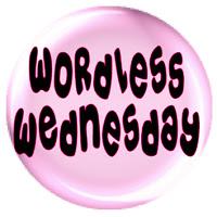 http://wordlesswednesday.blogspot.ca/